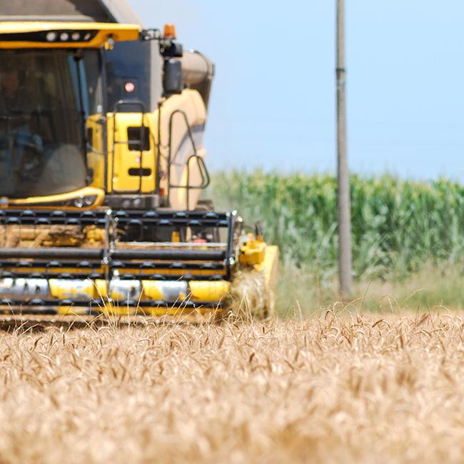 """Alla ricerca dell'agricoltura """"migliore"""", anzi no… di quella più sostenibile"""
